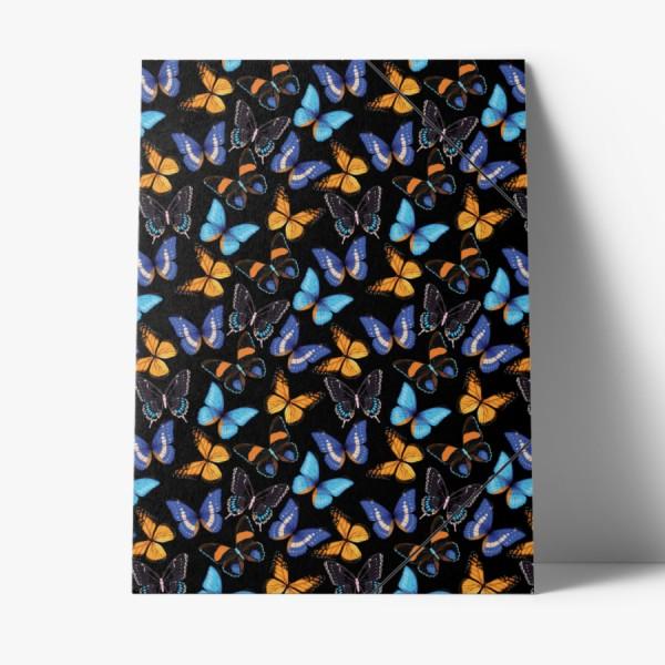 Sammelmappe Schmetterling