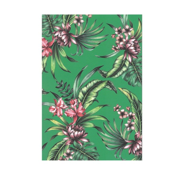 CEDON Postkarte Tropical Green