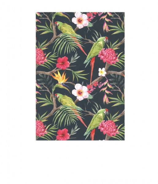 Postkarte Tropical