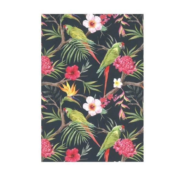 CEDON Postkarte Tropical