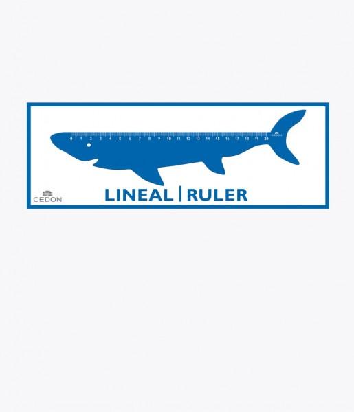 Lineal Hai | CEDON