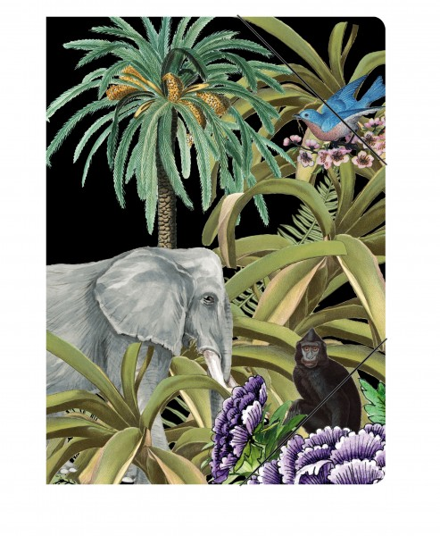 Sammelmappe Jungle | CEDON