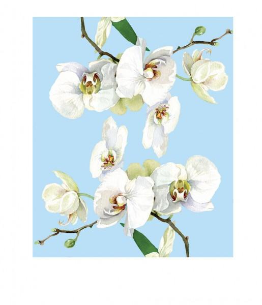 Microfasertuch Orchidee blau | CEDON