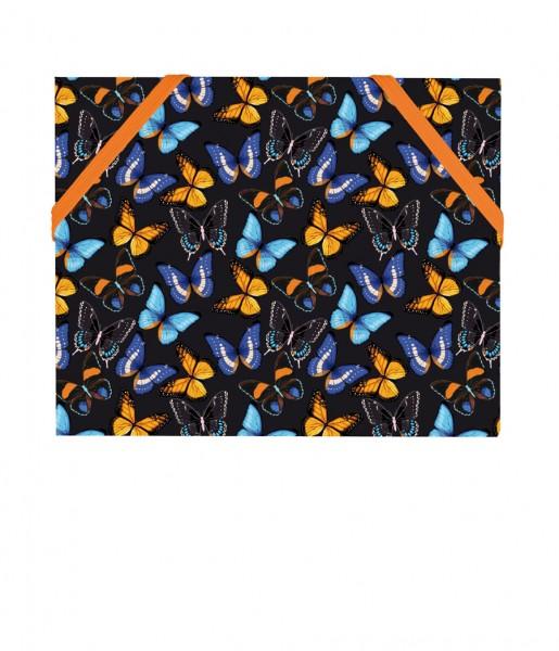 Mäppchen Schmetterlinge | CEDON