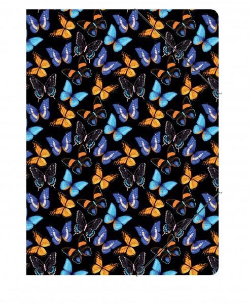 Sammelmappe Schmetterlinge | CEDON