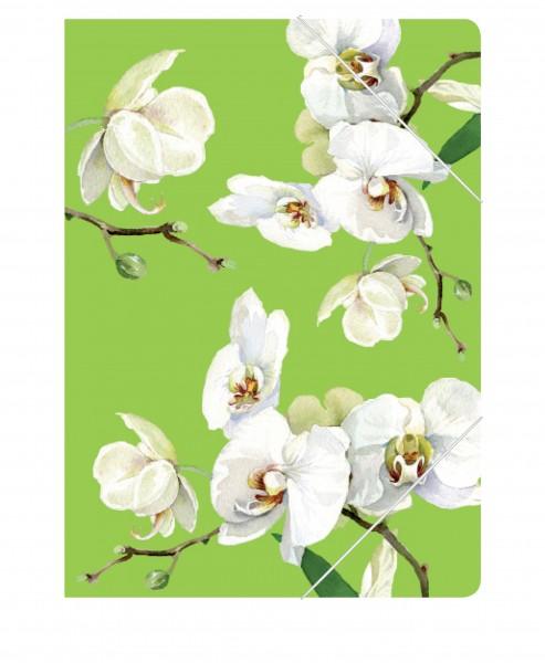 CEDON Sammelmappe Orchidee